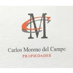 Carlos Moreno del Campo